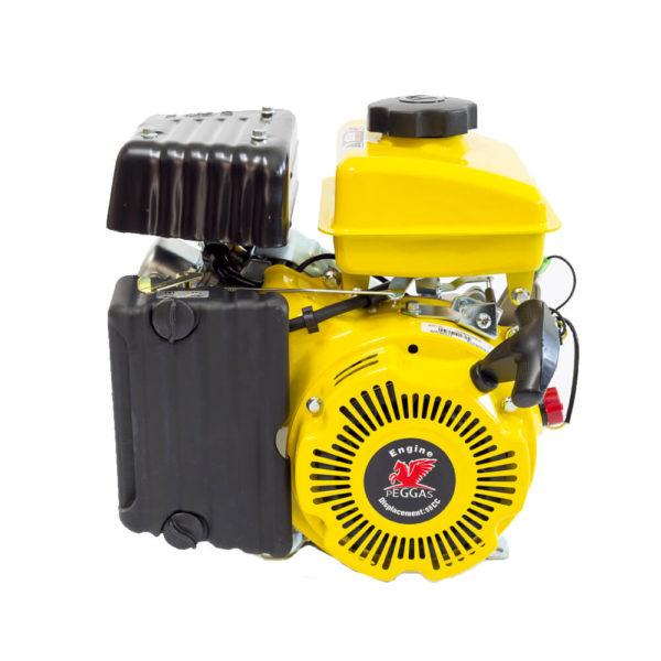 Benzínový motor - Petrol engine Peggas AP156F